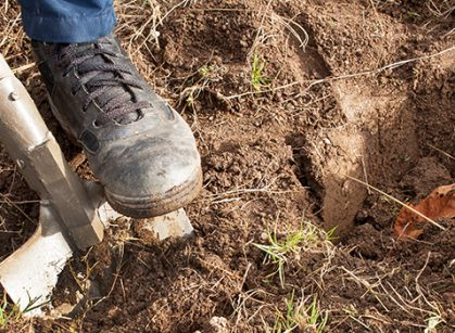 Why Should You Dial Before You Dig